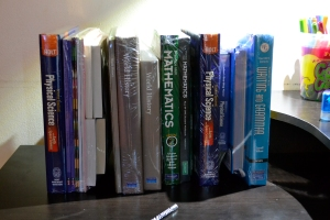 A whole bunch of school books. Makes the school year look longer than I'm used to!