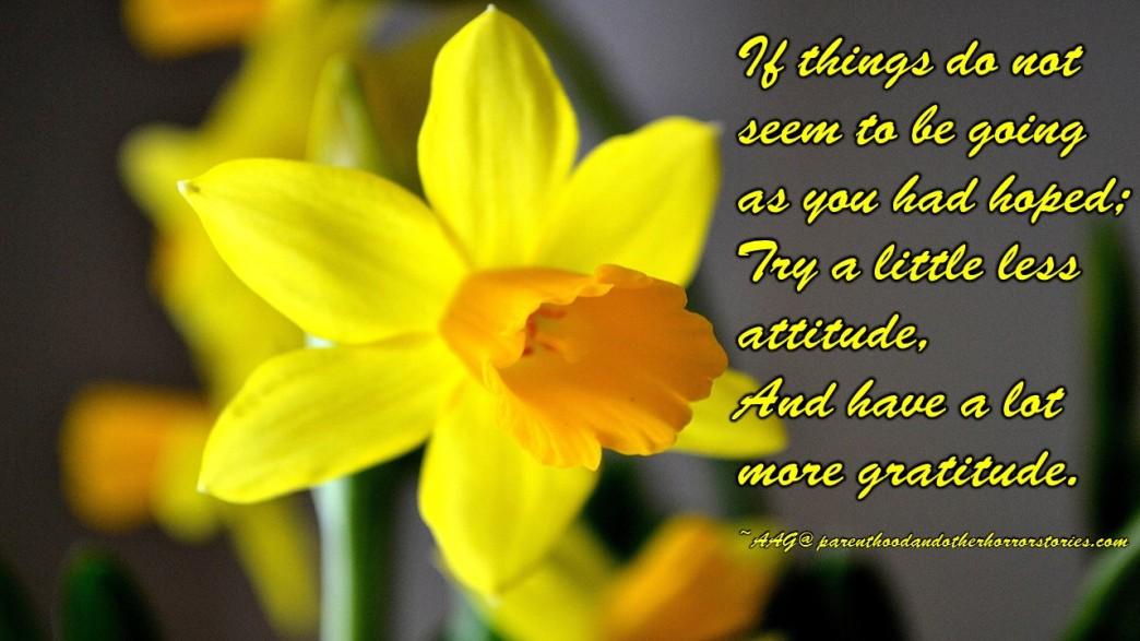 Attitude vs. Gratitude Quote