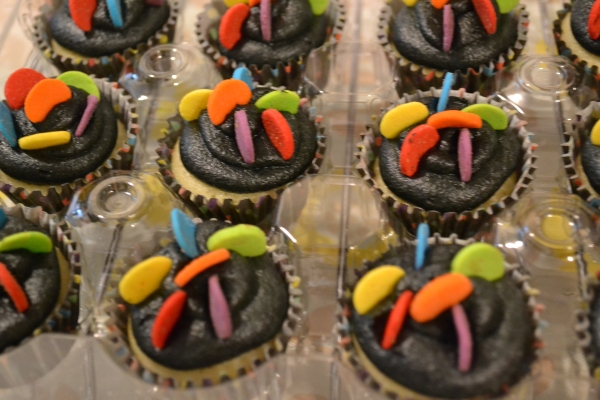 Cupcakes 1 6-6-2015 007