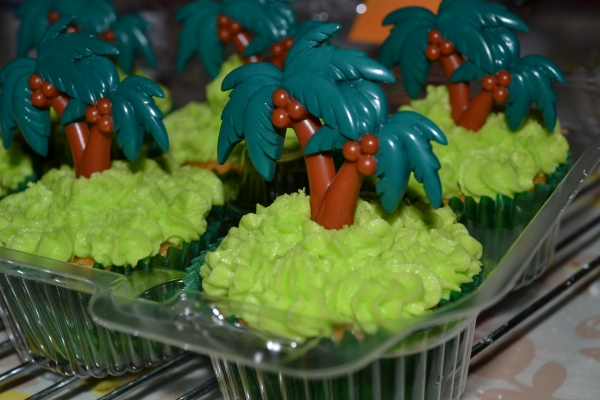 Cupcakes 1 6-6-2015 012