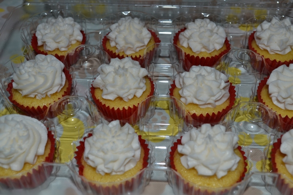 Cupcakes 2 6-7-2015 015